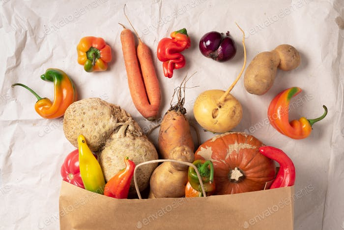 Trendy ugly organic vegetables. Assortment of fresh eggplant, onion, carrot, zucchini, potatoes