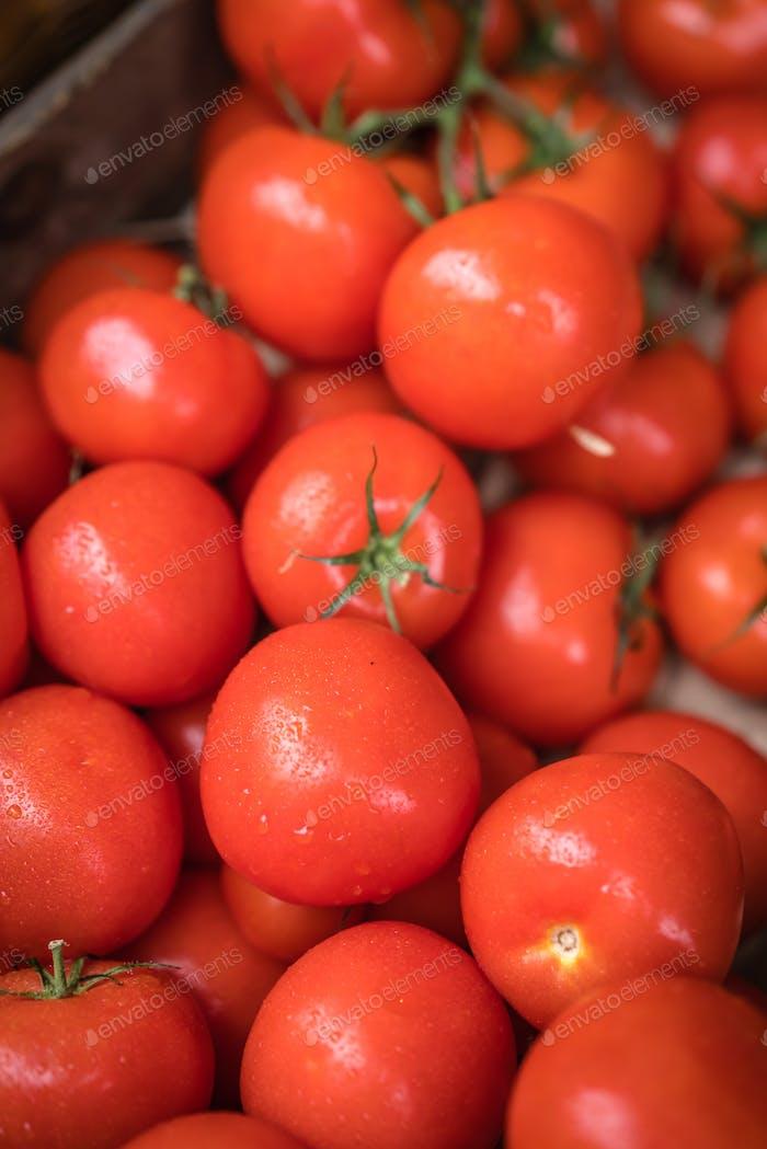 Fresh red organic tomatoes on sale