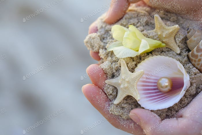 Sand, Shells and Starfish in the Hands
