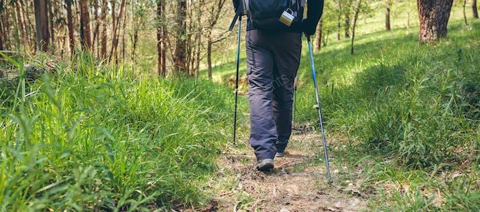 Male hiker doing trekking