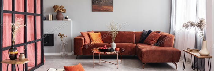 Elegant living room interior with comfortable sofa, real photo