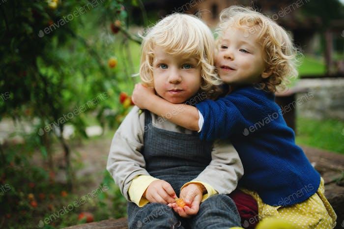 Kleine Kinder im Freien im Garten sitzen, nachhaltiges Lifestyle-Konzept
