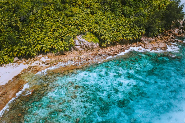 Aerial drone shot of palm grove and transparent blue water on Seychelles tropical beach, La Digue