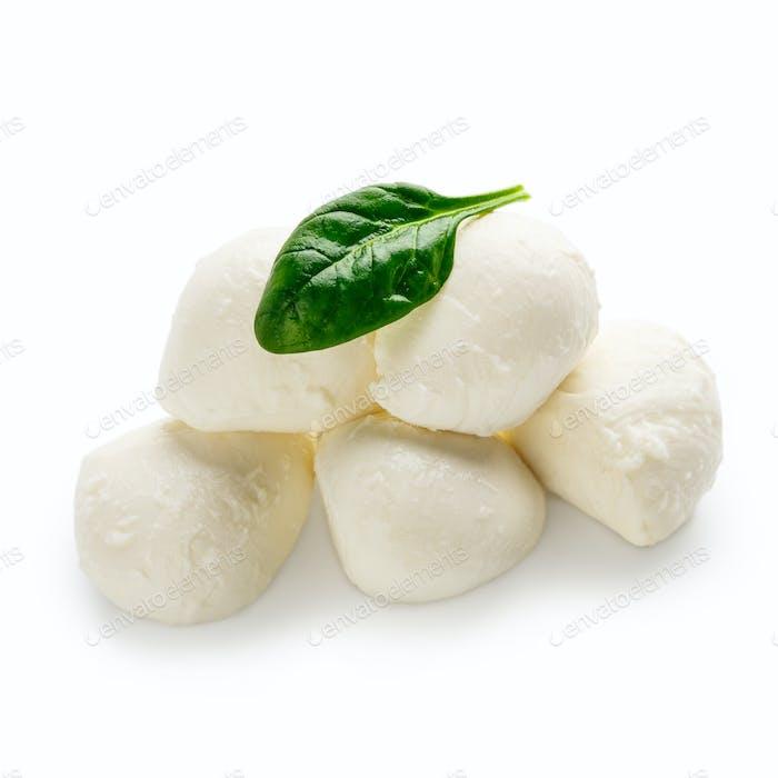 Mozzarella cheese and basil on white