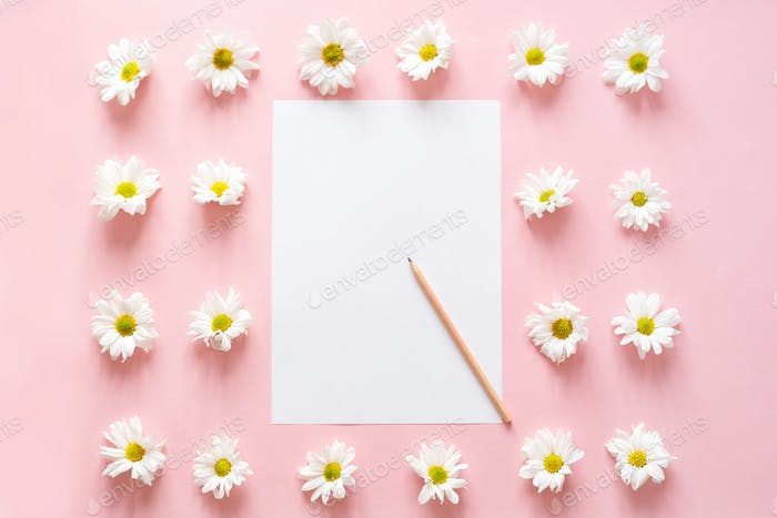 Workspace with paper for notes, chrysanthemum flowers on pink. Flat lay, top view