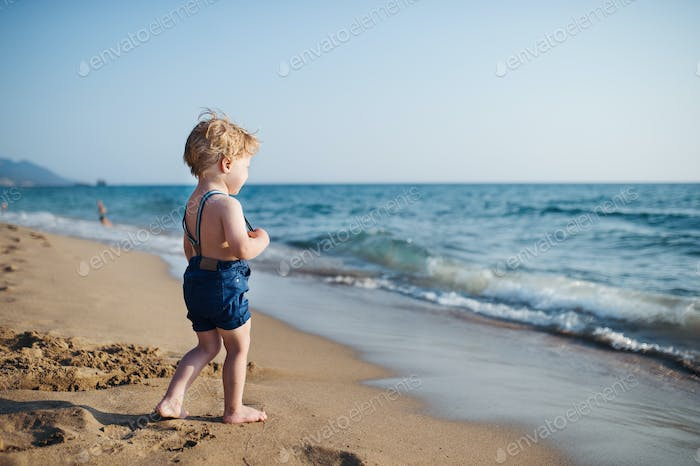 A small toddler boy with shorts walking on sand beach on summer holiday.
