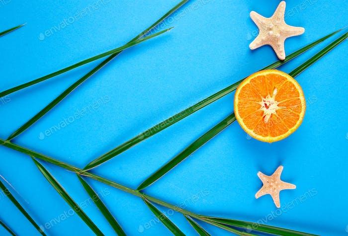 Orange fruit, starfish and palm leaves