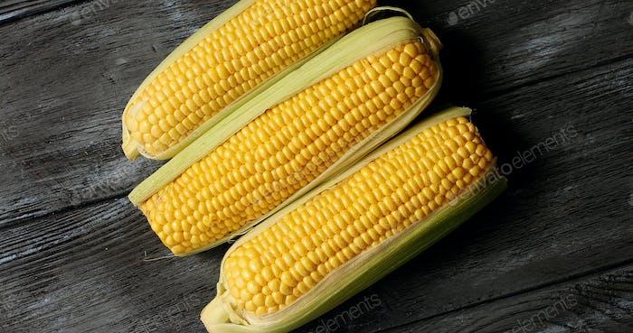 Raw yellow corncobs on table