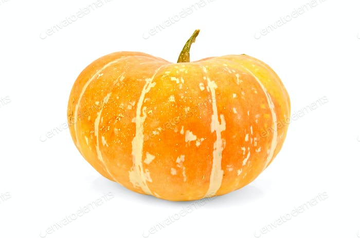 Pumpkin yellow
