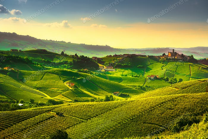 Langhe vineyards sunset panorama, Castiglione Falletto, Piedmont