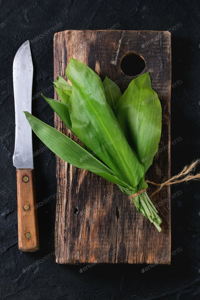 Bunch of fresh ramson