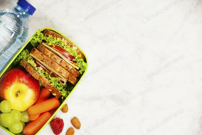 Green school lunch box with sandwich, apple, grape, carrot and b