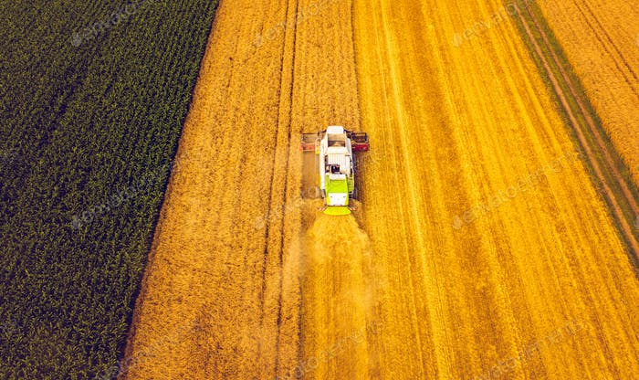 A modern combine harvester working a wheat field, aerial view