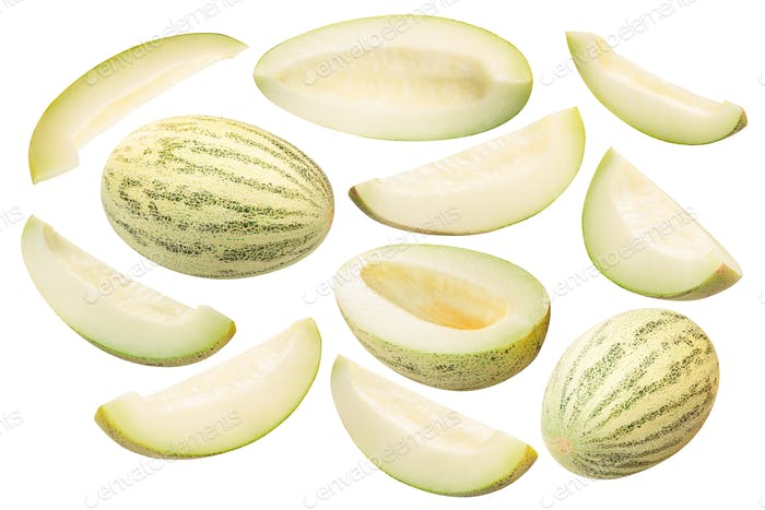 Muskmelon c. melon, whole and sliced, paths