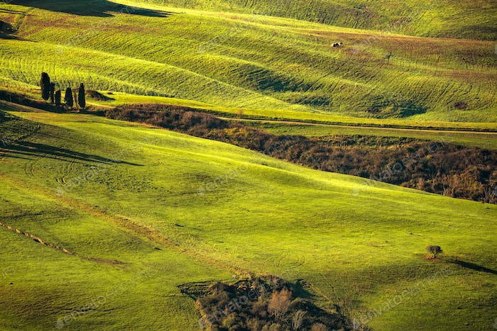Tuscany spring, rolling hills in the morning. Rural landscape. G