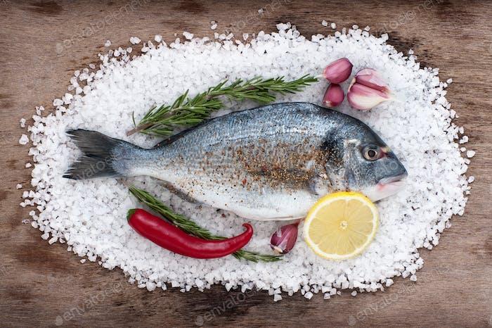 Dorado fish lies on a large sea salt with fresh garlic, chili, l