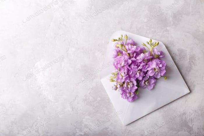 Blumen im Umschlag