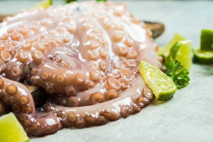 Whole fresh octopus on cutting board