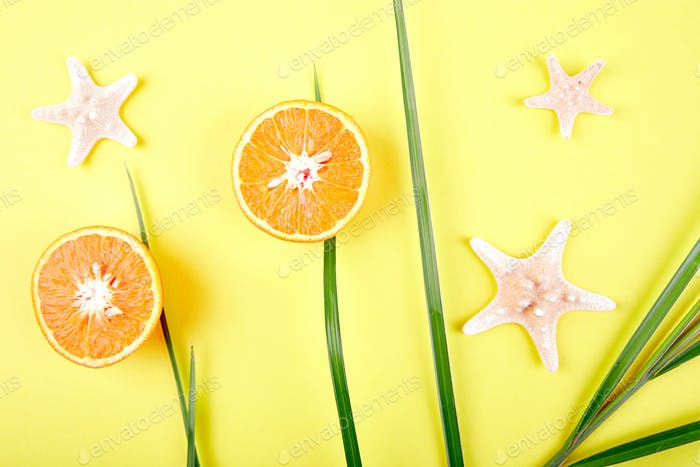 Orange fruit, starfish and palm leaves