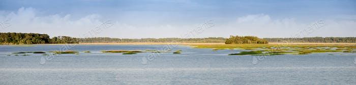 panorama of coastal estuary and forest