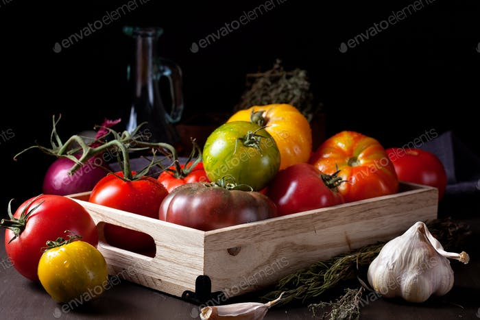 Colorful fresh tomatoes. Organic agriculture and farming concept. Seasonal autumn harvest