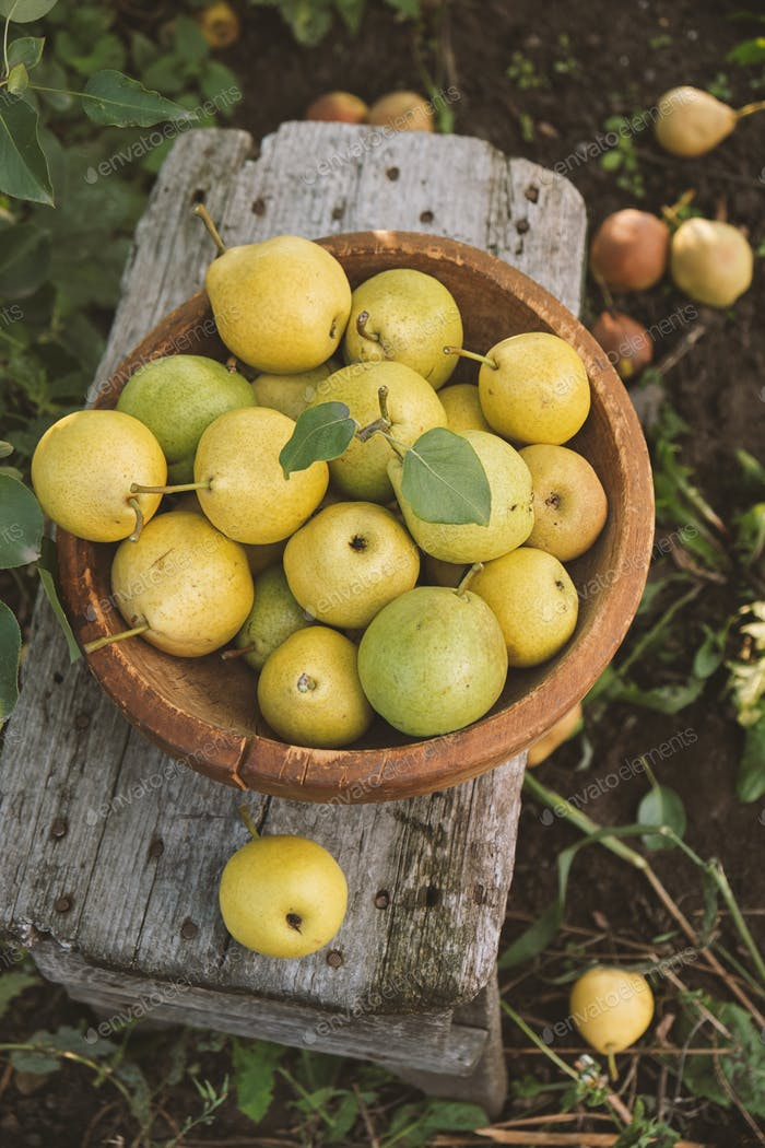 Organic pears in bowl on a wooden table, outdoors