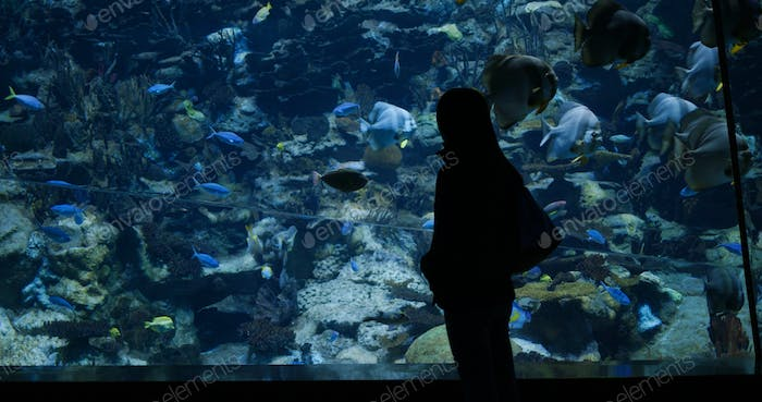 Woman visit aquarium in zoo park