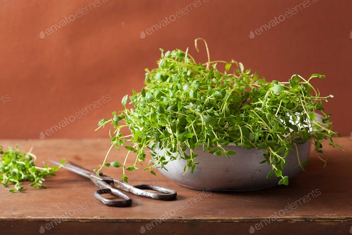 fresh thyme herb in metal bowl