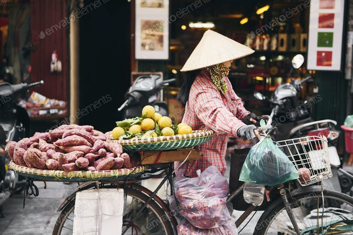 Vietnamese woman with bike selling tropical fruit at the market