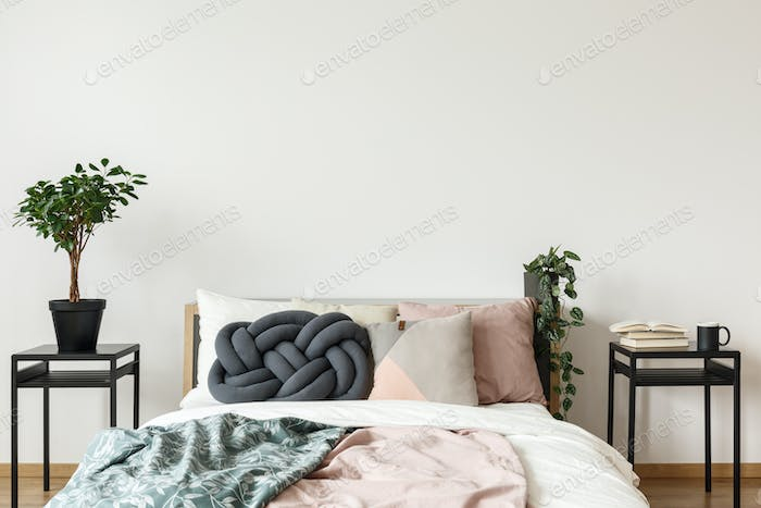 Simple bright bedroom with plant