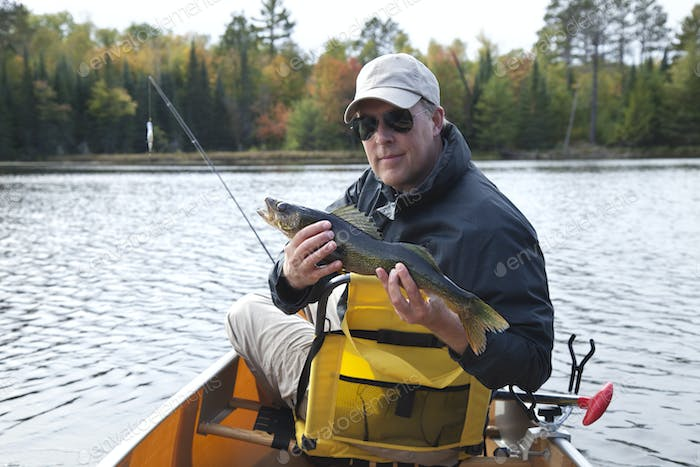 Happy fisherman holds up a walleye on a northern Minnesota lake