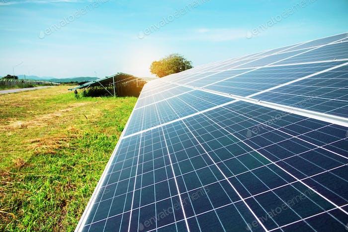 Sonnenkollektoren auf dem Rasen