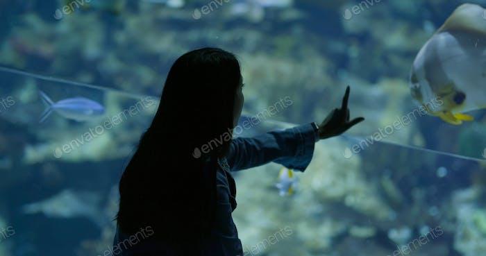 Woman looking at the fish in aquarium
