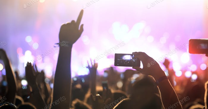 People enjoy concert at festival