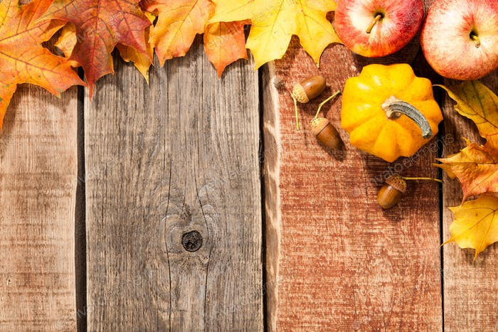 Autumn background with maple leaves, pumpkin, acorns and apples