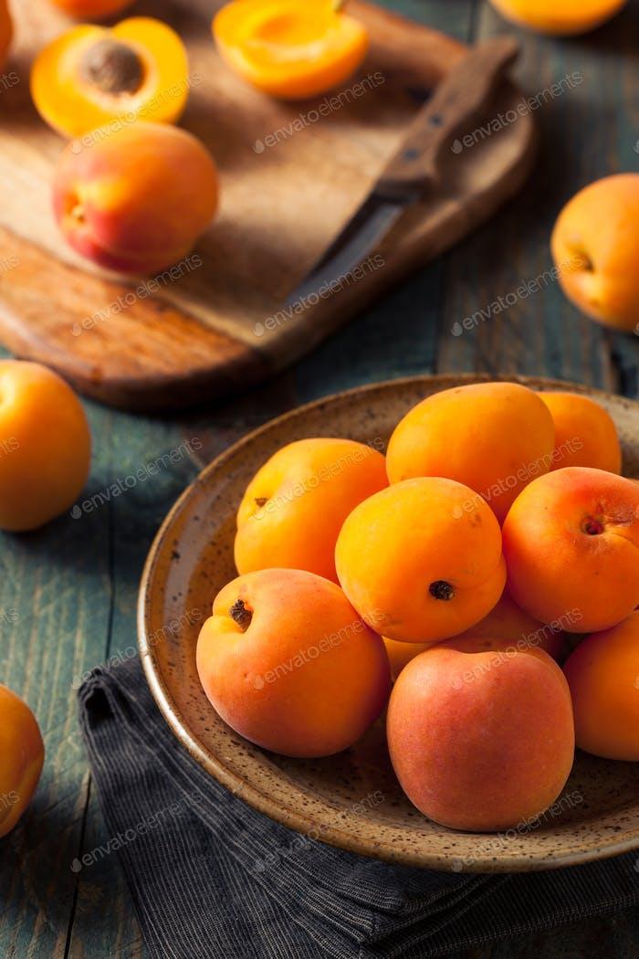 Raw Organic Yellow Apricots