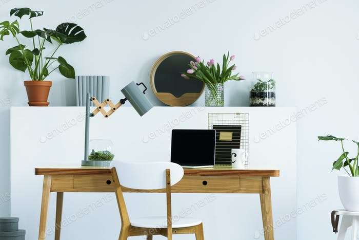 Real photo of wall shelf with flowers, fresh plant, decor and bo