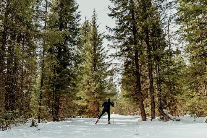 zurück männlicher Skifahrer Athlet