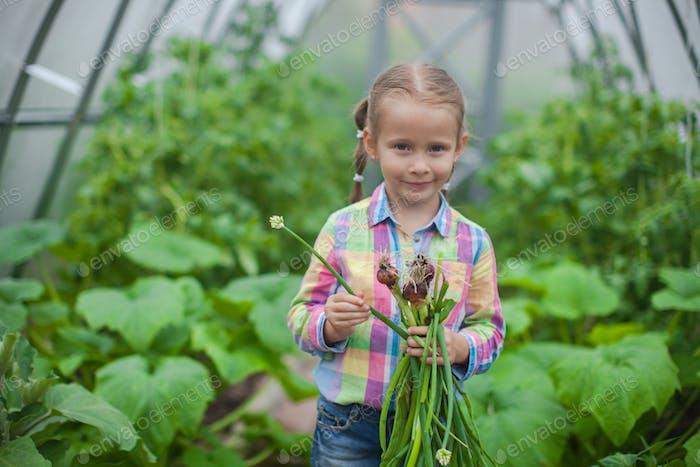 Porträt des kleinen Mädchens sammelt die Ernte Zwiebeln im Gewächshaus