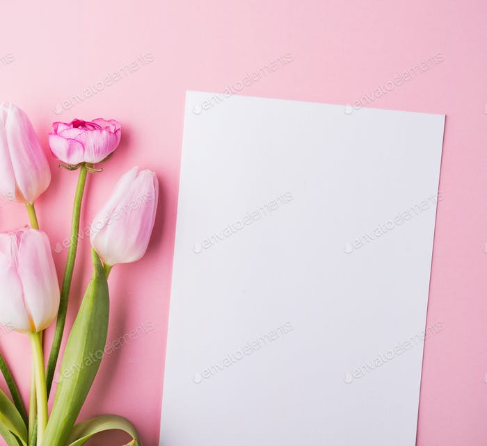 Easter and spring flat lay on a pink background. Copy space.