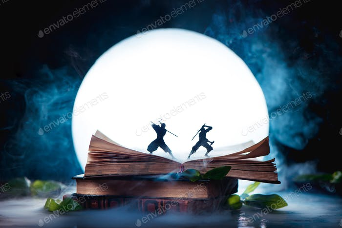 An open book with two ninja warrior silhouettes fighting in full Moon. Reader imagination and