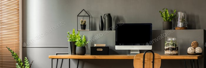 Fresh green plants, decoration and empty monitor screen placed o