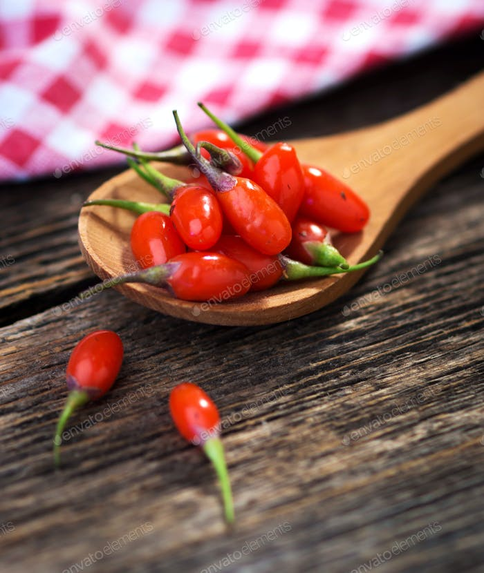 Fresh goji berries