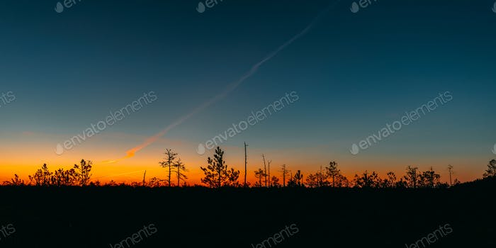 Berezinsky, Biosphere Reserve, Belarus. Autumn Dawn Landscape With Marsh Swamp During Sunset. Dark
