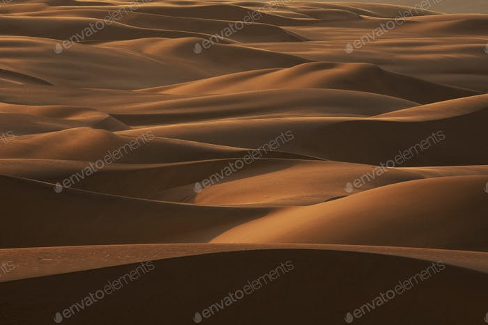 Late afternoon light on the sand dunes stretching the entire length of Namibia's coast in a band up