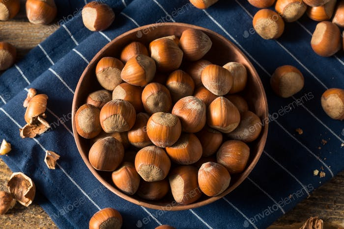 Raw Brown Organic Shelled Hazelnut Filberts