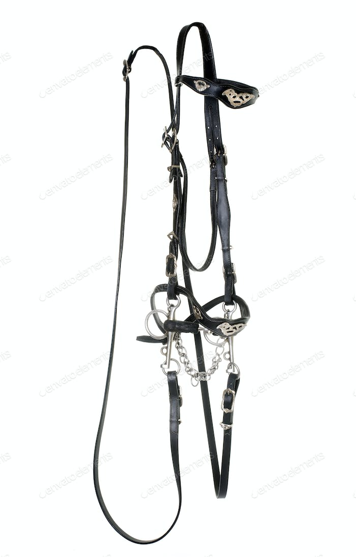 spanish bridle for horse