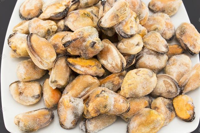 Frozen Mussels on a Plate Closeup