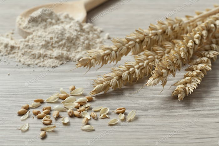 Dried wheat, seeds and flour