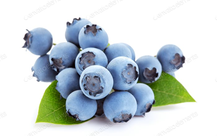 ripe blueberry fruits